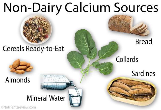 Which Foods Contains Excellent Sources Of Calcium